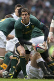 GBR Rugby Union England Vs South Africa Royalty Free Stock Photography
