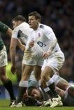 GBR rugby Zrzeszeniowy Anglia Vs Południowa Afryka Zdjęcie Stock