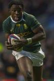 GBR rugby Zrzeszeniowy Anglia Vs Południowa Afryka Zdjęcie Royalty Free
