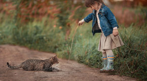 GCute dziewczyna bawić się z kotem Zdjęcie Stock