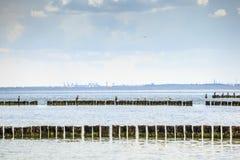 Gdansk Harbor skyline and sea birds. Poland Stock Photo