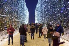 Beautiful winter illumination in Gdansk Royalty Free Stock Photos