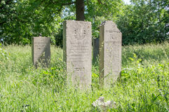 Gdansk, Poland - June 14, 2017: Old graves in the Jewish Cemetery of Gdansk. Royalty Free Stock Photo