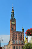 Gdansk Town Hall Royalty Free Stock Image