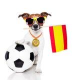 gdy piłki nożnej psi chorągwiany spanish zdjęcia royalty free