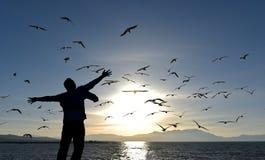 gdy ptaki uwalniają obraz royalty free