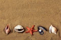 gdy tła zakończenia piaska denne skorupy denny Obrazy Stock