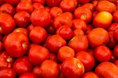 gdy tło był może pomidor używać tapeta Zdjęcie Stock