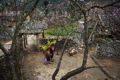 GDY wiosna PRZYCHODZI 2 zdjęcie stock