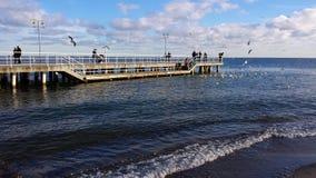 Sunday walk by the sea. Gdynia, Poland - January 07, 2018: Sunday walk by the sea, people feed birds Royalty Free Stock Photos