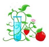 Geänderte Nahrungsmittel GMOs genetisch, die im Testrohr wachsen Lizenzfreie Stockfotos