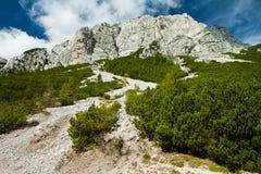 Geërodeerdel rotsen dichtbij de Vrsic Pas, Nationaal Julian Park Triglav, Royalty-vrije Stock Afbeelding