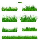 Geïllustreerd vector groen gras met bloem en bladreeks stock illustratie