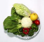 Geïllustreerde verscheidenheid van groenten op een witte achtergrond en een mooie spar, stock afbeeldingen