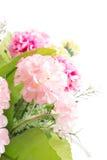 Geïsoleerd beeld van de valse bloem met vaas op witte achtergrond stock fotografie