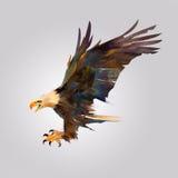 Geïsoleerd beeld van een vogel die een adelaar aanvallen stock illustratie