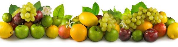 Geïsoleerd beeld van vele vruchten close-up stock foto