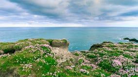 Geïsoleerd eiland met het overweldigen van voorgrond Royalty-vrije Stock Foto's