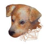 Geïsoleerd Gestileerd Portret van een Hond Royalty-vrije Stock Afbeeldingen