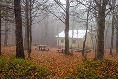 Geïsoleerd huis in het beukenbos in de Herfst stock foto