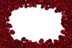 geïsoleerd kader van rode roze bloemblaadjes Stock Fotografie