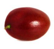 Geïsoleerd mangofruit Royalty-vrije Stock Afbeeldingen