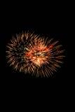 Geïsoleerd mooi vuurwerk Royalty-vrije Stock Foto's