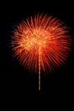 Geïsoleerd mooi vuurwerk Royalty-vrije Stock Foto