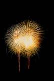 Geïsoleerd mooi vuurwerk Royalty-vrije Stock Fotografie