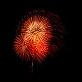 Geïsoleerd mooi vuurwerk Stock Afbeelding