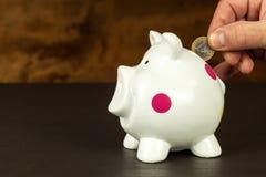 Geïsoleerd op wit Geld-doos met geldige euro bankbiljetten Besparingen op de hypotheek Banksector Royalty-vrije Stock Afbeelding