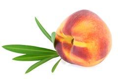 Geïsoleerd perzikfruit Royalty-vrije Stock Afbeeldingen