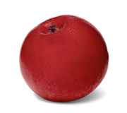 Geïsoleerd Rood Apple op een Witte Achtergrond Royalty-vrije Stock Foto's