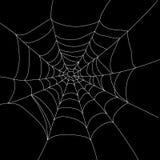 Geïsoleerd spinneweb royalty-vrije illustratie