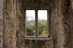Geïsoleerd venster van een kasteel stock foto