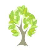 Geïsoleerde abstracte groene vectorboom Stock Afbeelding