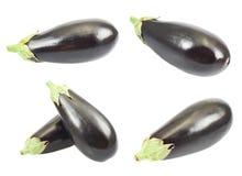Geïsoleerde aubergine Stock Afbeelding