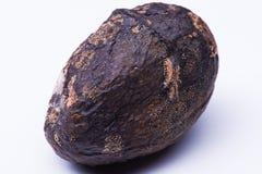 Geïsoleerde bedorven mango Stock Foto