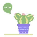 Geïsoleerde cactus in een pot Pictogram van cactusbloem De lente is hier opnieuw royalty-vrije illustratie