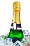 Geïsoleerde champagnefles in ijs Stock Foto's
