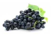 Geïsoleerde cluster van blauwe druif stock fotografie