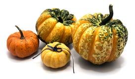 Geïsoleerde de herfstpompoen Royalty-vrije Stock Fotografie