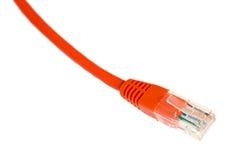 Geïsoleerde de kabel van het netwerk Royalty-vrije Stock Afbeelding