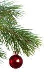 Geïsoleerde de spar van Kerstmis Stock Foto's
