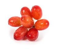 Geïsoleerde druiven Royalty-vrije Stock Afbeelding