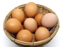 Geïsoleerde eieren stock afbeeldingen