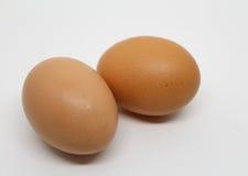 Geïsoleerde eieren stock afbeelding