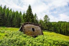 Geïsoleerde en verlaten bergcabine in het hout/het Dolomiet/Italië/groen/de bomen royalty-vrije stock foto