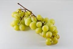 Geïsoleerde groene druif op witte achtergrond Stock Foto's