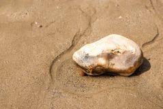 Geïsoleerde grote kiezelsteen in het zand Royalty-vrije Stock Afbeeldingen